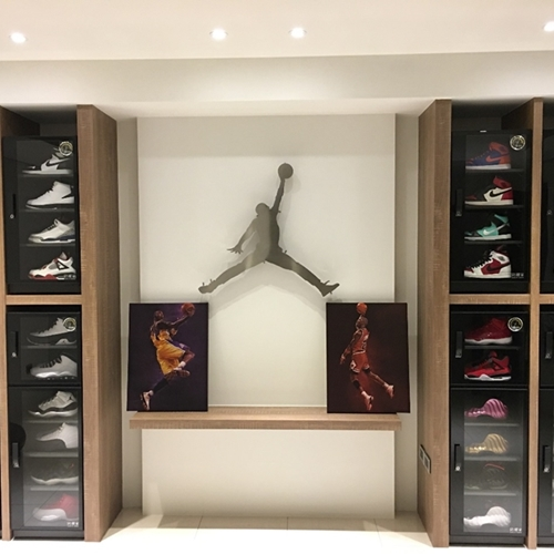 S-041 Customized Dry Cabinet for sneakers